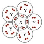 Image result for molekul XY5